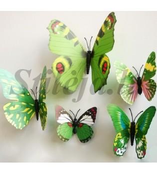 3D žali magnetiniai drugeliai