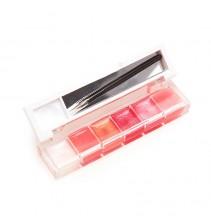 6 spalvų lūpų dažų mini paletė LP009