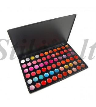 66 spalvų lūpų dažų paletė LP002