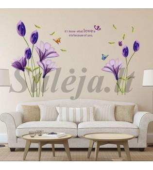 Sienų lipdukas Gėlės3